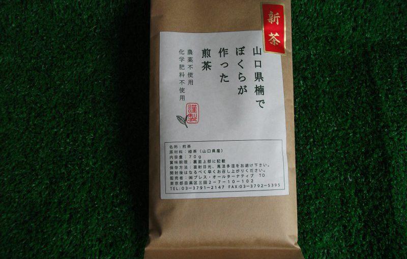山口県楠でぼくらが作った煎茶